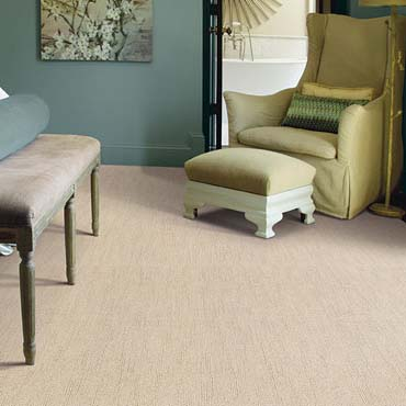Caress Carpet by Shaw | Spiceland, IN